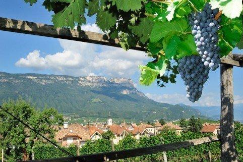 Girlan/Eppan an der Weinstraße – Südtirols Süden